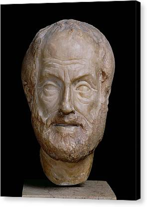 Statue Portrait Canvas Print - Aristotle  by Lysippos