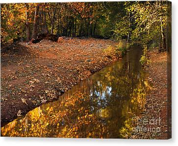 Arizona Autumn Reflections Canvas Print by Mike  Dawson