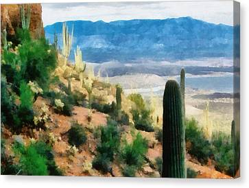 Arizona Desert Heights Canvas Print by Michelle Calkins