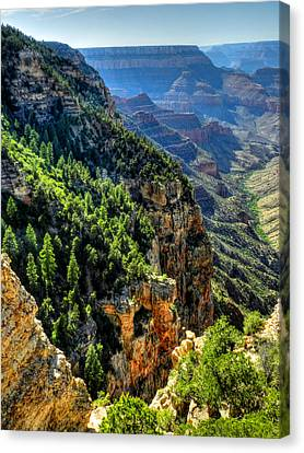 Arizona - Grand Canyon 007 Canvas Print