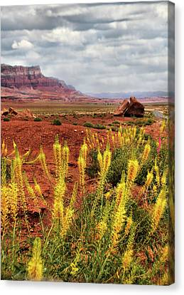 Canvas Print featuring the photograph Arizona Landscape by Barbara Manis