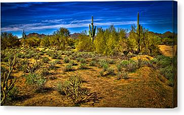 Carefree Arizona Canvas Print - Arizona Landscape Iv by David Patterson