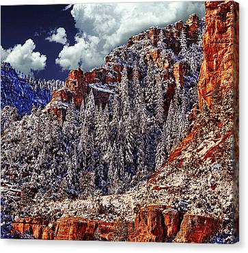 Arizona Secret Mountain Wilderness In Winter Canvas Print by Bob and Nadine Johnston
