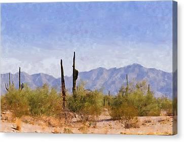 Arizona Sonoran Desert Canvas Print by Betty LaRue