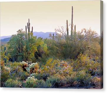 Arizona Spirit Canvas Print