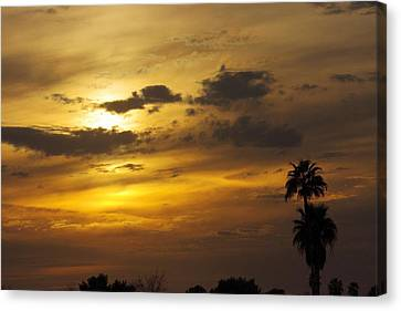 Arizona Sunset Canvas Print