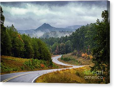Arkansas Logging Road  Canvas Print