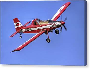 Arkansas Razorbacks Air Tractor Canvas Print by Jason Politte
