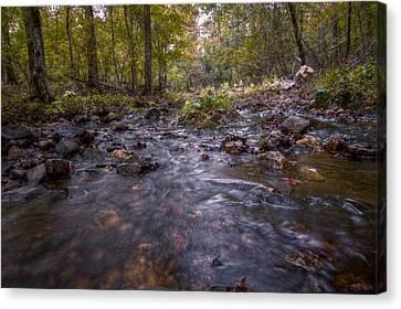 Arkansas Stream Canvas Print