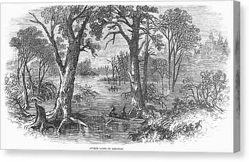 Arkansas Sunken Lands Canvas Print