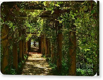 Arlie Italian Pergola Garden Canvas Print