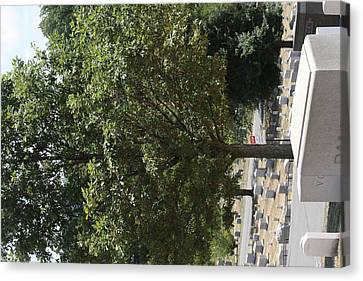 Arlington National Cemetery - 121228 Canvas Print by DC Photographer