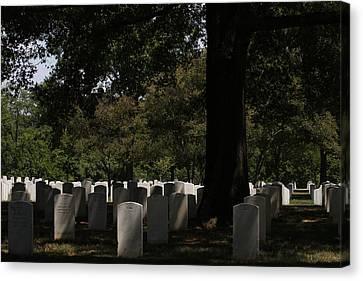 Arlington National Cemetery - 121243 Canvas Print by DC Photographer