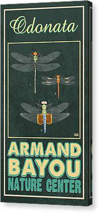 Nature Center Canvas Print - Armand Bayou Dragonfly by Jim Sanders