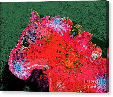 Arnold Canvas Print by Diane DiMarco