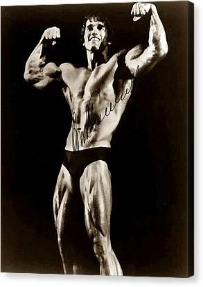 Schwarzenegger Canvas Print - Arnold Schwarzenegger by Studio Release