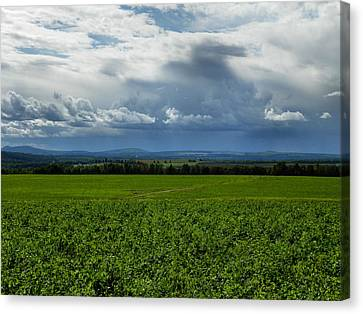 Aroostook County 3 Canvas Print by Gene Cyr