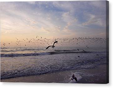 Canvas Print featuring the photograph Around The Beach by Lorenzo Cassina