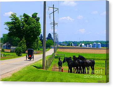 Around The Bend Canvas Print by Tina M Wenger