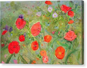 Arpeggiando Canvas Print by Ann Patrick