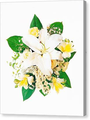 Arranged Flowers And Leaves On White Canvas Print by Panoramic Images