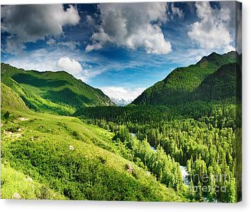 Art Beautiful Greens Landscape Canvas Print by Boon Mee