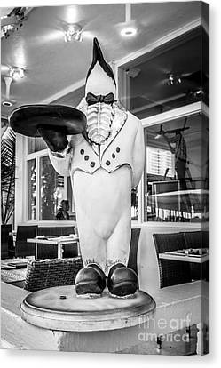 Art Deco Penguin Waiter South Beach Miami - Black And White Canvas Print by Ian Monk