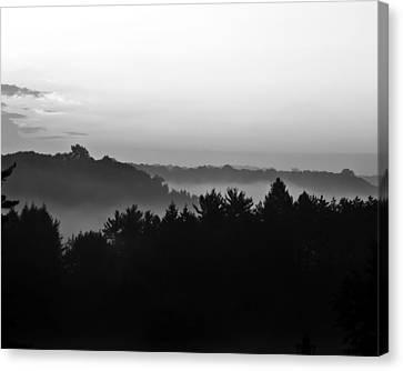 Foggy Day Canvas Print by Tim Buisman