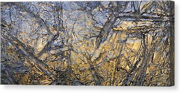 Art Of Ice 3 Canvas Print by Sami Tiainen