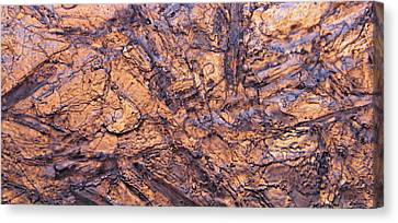 Art Of Ice Canvas Print