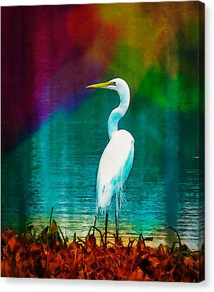 Art Of The Egret Canvas Print by Frank Bright