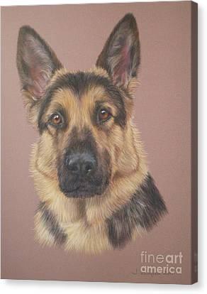 Arthur - German Shepherd Canvas Print by Joanne Simpson