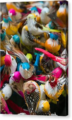 Artificial Birds For Sale At A Market Canvas Print