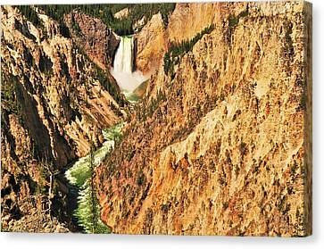 Yellowstone Canvas Print - Artist Point View by Greg Norrell