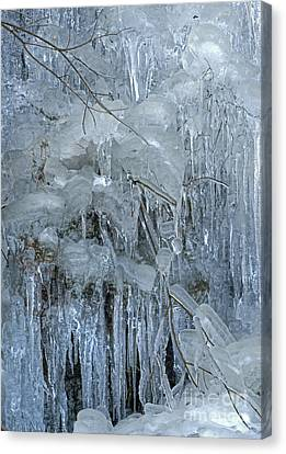 Artistry In Ice 9 Canvas Print