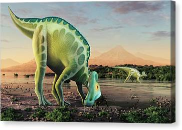Artwork Of A Corythosaurus Dinosaur Canvas Print