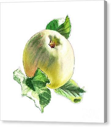 Canvas Print featuring the painting Artz Vitamins Series A Happy Green Apple by Irina Sztukowski