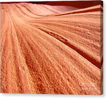 As Far As The Eye Can See Canvas Print by John Malone