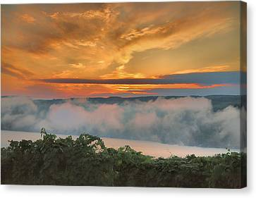 Pastoral Vineyard Canvas Print - As Morning Breaks by Steven Ainsworth