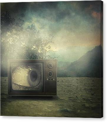 As Seen On Tv Canvas Print by Taylan Apukovska