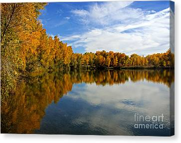 As The Leaves Turn Canvas Print by Bob Hislop