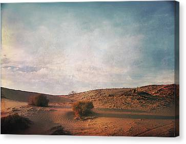 As The Sand Shifts So Do I Canvas Print by Laurie Search