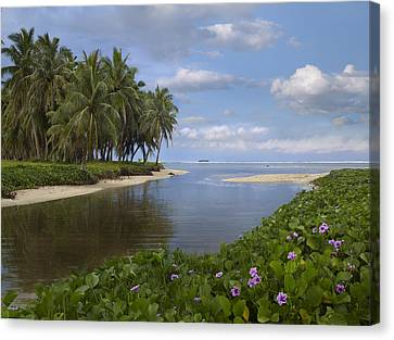 Asan Beach In Guam Canvas Print