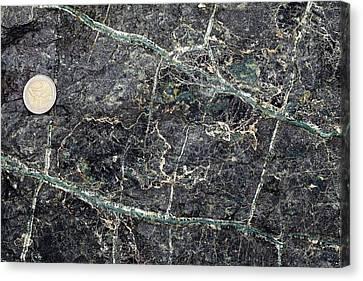 Asbestos Canvas Print - Asbestos Veins In Serpentinite by Dirk Wiersma
