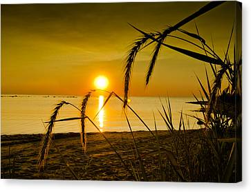 Canvas Print featuring the photograph Ascend by Jason Naudi Photography
