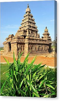 Asia, India, Tamil Nadu, Mahabalipuram Canvas Print by Steve Roxbury