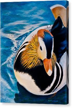 Mandarin Wood Duck Canvas Print