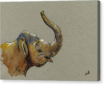 Asiatic Elephant Head Canvas Print by Juan  Bosco