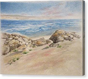 Asilomar Rocks Canvas Print by Renee Goularte