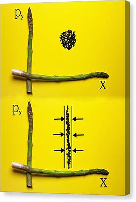 Canvas Print featuring the photograph Asparagus And Black Rice Depicting Heisenberg Uncertainty Food Physics by Paul Ge